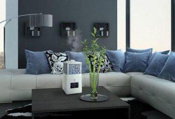 Electrolux, un humidificateur: Avis sur les meilleurs modèles