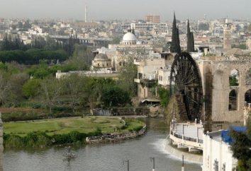 Syrien, Hama: Geschichte und Beschreibung