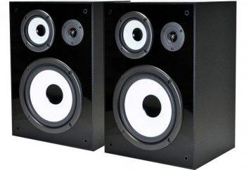 Haut-parleurs Yamaha NS Bookshelf 6490: caractéristiques et commentaires
