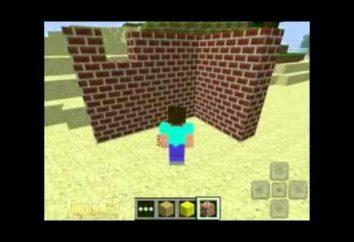 Magnificent Minecraft: Wie online mit Ihren Freunden zu spielen?