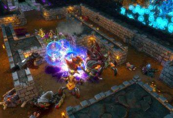 Dungeons 2: revisão e passagem