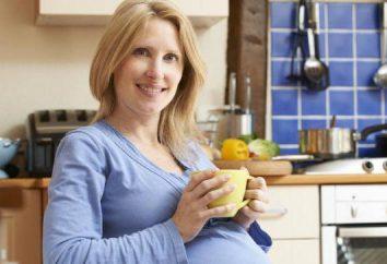 Feuilles de framboises avant la naissance: comment se préparer et prendre