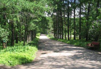 Piante aromatiche (Orto Botanico): un'area verde nel centro della città