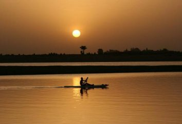 regime fiume Niger: caratteristiche speciali