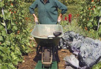 Jardín carretilla – el mejor amigo del trabajador y entusiasta jardinero