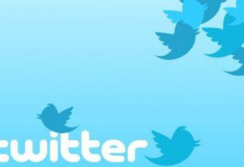 """Co to jest """"Twitter""""? Jak usunąć stronę w """"Twitter""""?"""