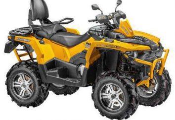 """ATV """"stealth 800 Cheetah"""": comentários dos proprietários, descrições e especificações"""