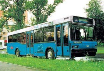 autobusy MAZ 103, 105, 107, 256: Charakterystyki techniczne modeli