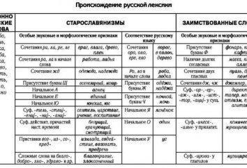 Vocabolario in termini di origine. Il sistema lessicale della moderna lingua russa. nuove parole