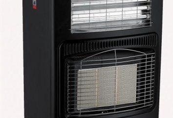 Des variantes d'un chauffage de la maison de campagne. Le chauffage option la plus économique