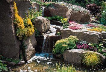 Stworzyć niepowtarzalny design (kamieni ozdobnych) ogród własnymi rękami