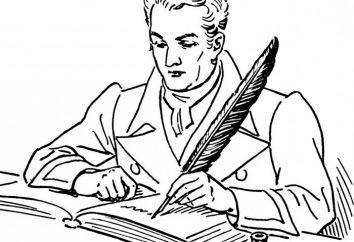 Nowoczesny poeta w 21 wieku. Co to jest?
