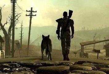 """""""Silver Umhang» (Fallout 4): Beschreibung und Passage"""