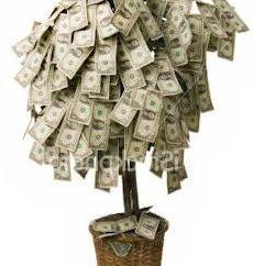 árvore ornamental principal com as mãos