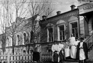 El hospital de distrito en el siglo 19. Apertura del primer hospital de distrito