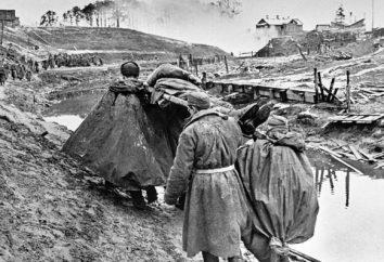 Come è la perdita dell'Unione Sovietica nella Seconda Guerra Mondiale?