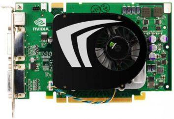 GeForce 9500 GT – Karta graficzna: specyfikacje, opinie i referencje