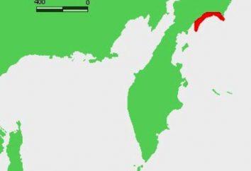 Où se trouve Olyutorskij Bay?