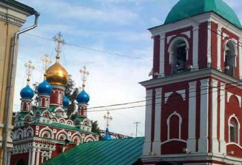 Assunzione della Beata Vergine Maria – chiesa di Gonchary: la storia