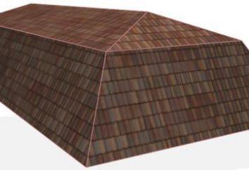 Die Vorrichtung Mansarddächer