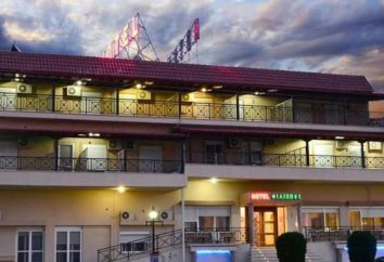 Filippos Hotel 3 (Salonicco, Chalkidona): recensioni