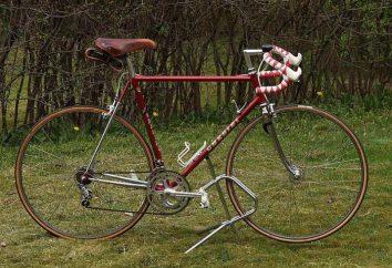 Jak wybrać rower dla mężczyzn: przegląd, odmiany, opis i opinie. Jak wybrać rower górski dla mężczyzn na wysokości i wagi
