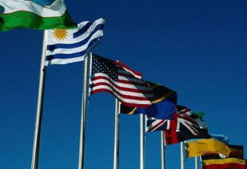 Che cosa è l'immunità diplomatica e chi lo possiede?