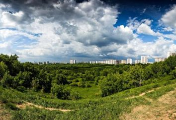 seau Skhodnenskiy (bol Skhodnenskaya) – monument de la nature et de l'histoire