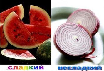 słowotwórstwo w języku rosyjskim – proces rozwoju