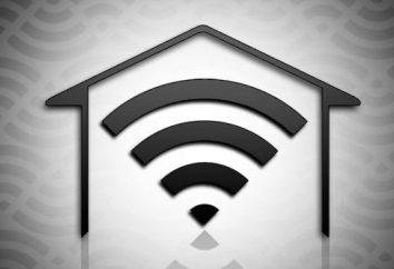 Internet in einem Privathaus. Ohne Telefon und Drähte