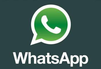 Comment lire la conversation de quelqu'un d'autre dans WhatsApp. Pratique sur PC Messager