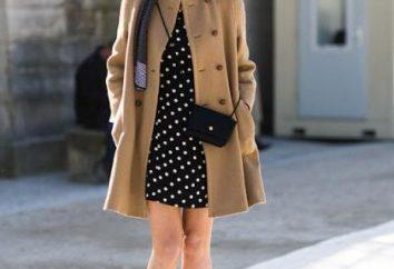 chic parigino come un modo di vestire. Style Guide