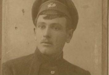 Fedoseyev Gregory Anisimovich Sovietica scrittore: biografia, la creatività