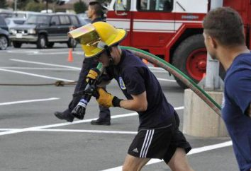Bombeiros troncos: especificações. Trunks bombeiros manual e o seu propósito