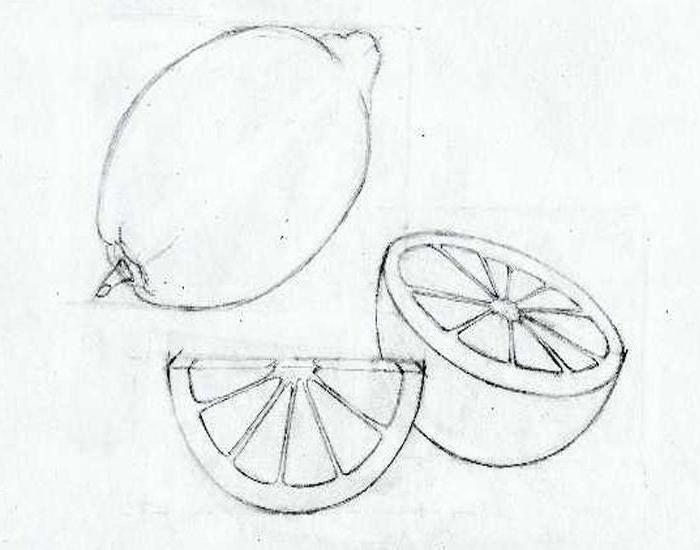 Limoni Disegno: Come Disegnare Un Limone: Consigli Semplici E Azioni Passo