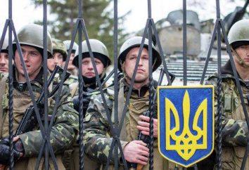 Czy jest możliwe, aby wysłać wojska na Ukrainie?