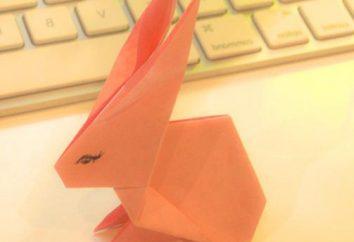 Como fazer um coelho de papel: aulas de mestrado