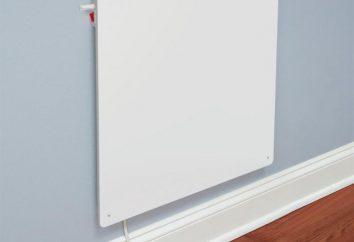 Come scegliere una stufa elettrica a muro economico?