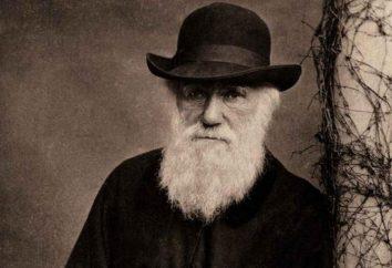 Il contributo di Darwin alla biologia è breve. Charles Darwin ha contribuito allo sviluppo della biologia?