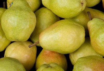 Descripción de la variedad de peras Veles. Pera Veles: revisa los jardineros