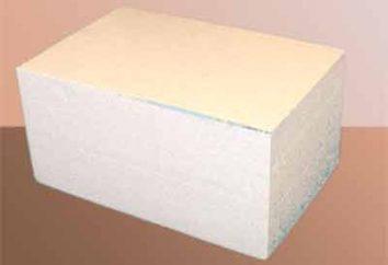 L'utilisation de blocs de polystyrène dans la construction de maisons