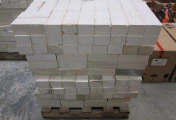 Les blocs de silicate de gaz: spécifications. Dimensions, des critiques et des prix