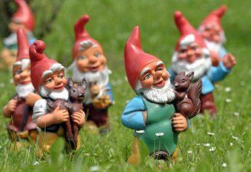 Gnome, wunscherfüllenden: als Ursache? Detaillierte Anleitungen und Empfehlungen