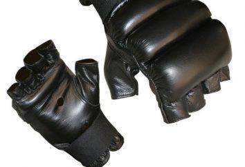 Rękawice snarjadnye – najlepsze obiekty sportowe