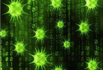 vírus polimórficos – O que é e como lidar com eles?