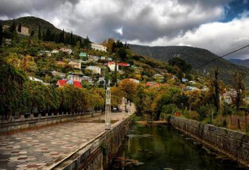 """Zhoekvara"" – hotel 4 * (Gagra, Abkhazia). Recensioni, descrizioni, i servizi, i pasti"