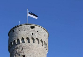 Historia Estonii: przegląd