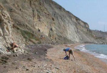 península Gydansky: depósitos, o clima, o território. Reserve na península Gydan
