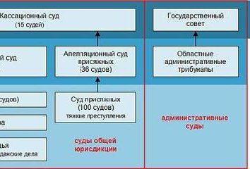 Rodzaje sądów w Federacji Rosyjskiej i ich charakterystyka