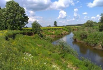 """Parco Nazionale """"Zavidovo"""" (Mosca e Tver regione): descrizione, attrazioni"""